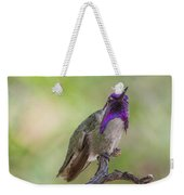 Hummingbird Male Costa Weekender Tote Bag
