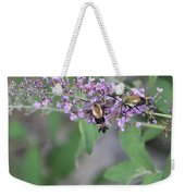 Hummingbird Moths Weekender Tote Bag