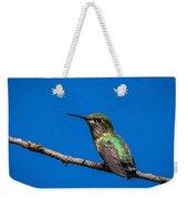 Hummingbird Posing Weekender Tote Bag