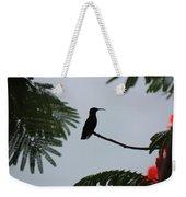 Hummingbird Silhouette Weekender Tote Bag