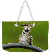 Hummingbird Stretching  Weekender Tote Bag