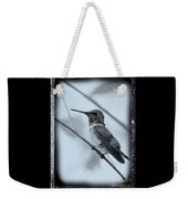 Hummingbird With Old-fashioned Frame 1 Weekender Tote Bag