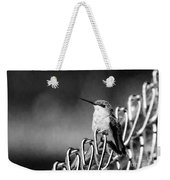 Hummy On Fence B And W Weekender Tote Bag