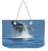 Humpback Whale Breaching Weekender Tote Bag by Bob Christopher