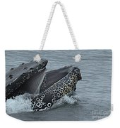Humpback Whale  Lunge Feeding 2013 In Monterey Bay Weekender Tote Bag