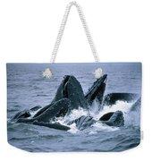 Humpback Whales Gulp Feeding On Herring Weekender Tote Bag