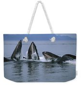 Humpback Whales Gulp Feeding Southeast Weekender Tote Bag