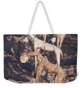 Hung To Dry Weekender Tote Bag