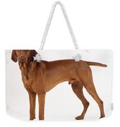 Hungarian Vizsla Dog Weekender Tote Bag