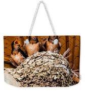 Hungry Baby Swallows - Antelope Island - Utah Weekender Tote Bag by Gary Whitton