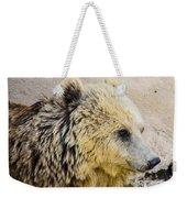Hungry Bear Weekender Tote Bag