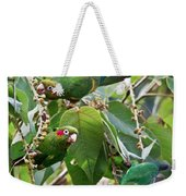 Hungry Chiriqui Conures Weekender Tote Bag