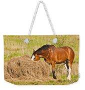 Hungry Horse Weekender Tote Bag