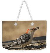 Hungry Red-bellied Woodpecker - Melanerpes Carolinus Weekender Tote Bag
