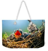Hungry Tree Swallow Fledgling In Nest Weekender Tote Bag