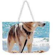 Husky On The Beach Weekender Tote Bag
