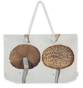 Hypodendrums Fagi And Queris Weekender Tote Bag