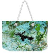 I Am A Hairy Ghost Pipe Fish Weekender Tote Bag