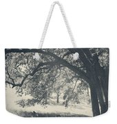I Would Wrap My Arms Around You Weekender Tote Bag