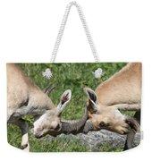 Ibex Doing Battle Weekender Tote Bag