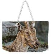 Ibex Pictures 38 Weekender Tote Bag