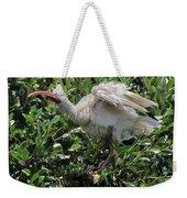 Ibis 12 Weekender Tote Bag