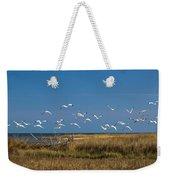Ibis Flight Weekender Tote Bag