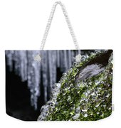 Ice Balls And 'tites Weekender Tote Bag