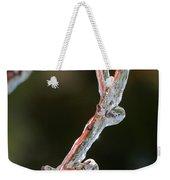 Icy Branch-7512 Weekender Tote Bag