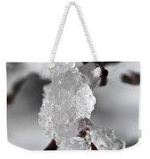 Icy Elegance Weekender Tote Bag by Elena Elisseeva