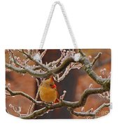 Icy Perch Weekender Tote Bag