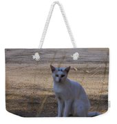 If Cats Could Talk Weekender Tote Bag