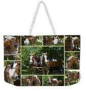 If You Love Belgian Horses Weekender Tote Bag