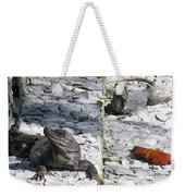 Iguana Bask In The Sun With You Weekender Tote Bag