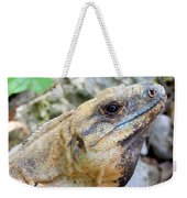Iguana Of The Uxmal Pyramids In Yucatan Mexico Weekender Tote Bag