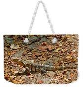 Iguana On A Trail In Manuel Antonio National Preserve-costa Rica Weekender Tote Bag