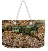 Iguana With A Smile Weekender Tote Bag