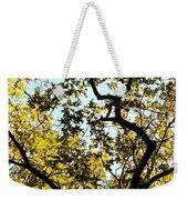 Illuminated Oak Tree Weekender Tote Bag