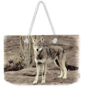 Illusion Of A Wolf Weekender Tote Bag