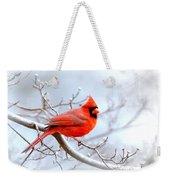 Img 2259-22 - Northern Cardinal Weekender Tote Bag