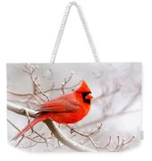 Img_2559-8 - Northern Cardinal Weekender Tote Bag