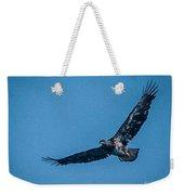Immature Bald Eagle In Flight Weekender Tote Bag