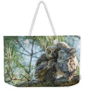 Immature Great Horned Owls Weekender Tote Bag
