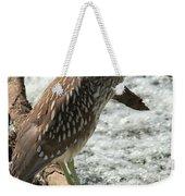 Immature Night Heron Weekender Tote Bag