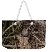 Immature White-throated Sparrow Weekender Tote Bag