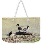 Immature Wood Ducks Weekender Tote Bag