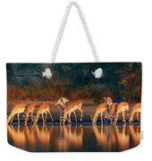 Impala Herd With Reflections In Water Weekender Tote Bag