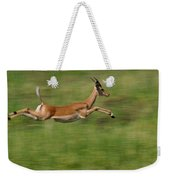 Impala  Running And Leaping Weekender Tote Bag