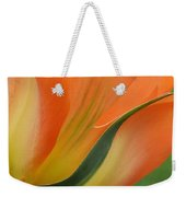 Imperfect Beauty Weekender Tote Bag