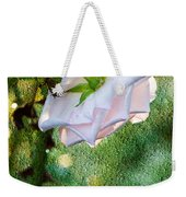In Early Morning Light - White Rose Weekender Tote Bag